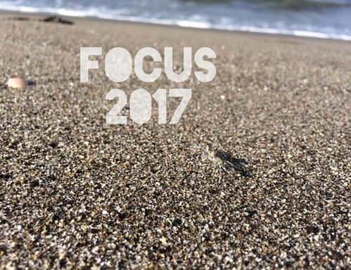Weekly Word Inspiration : FOCUS