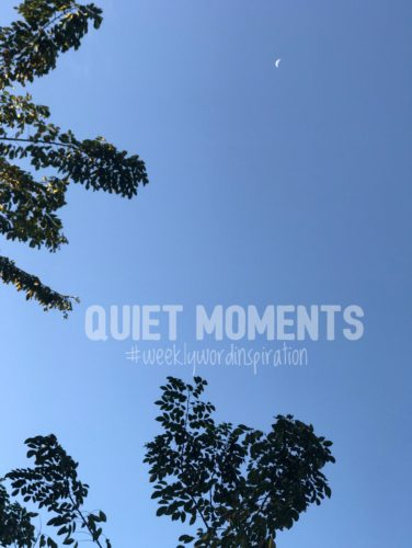 these quiet moments